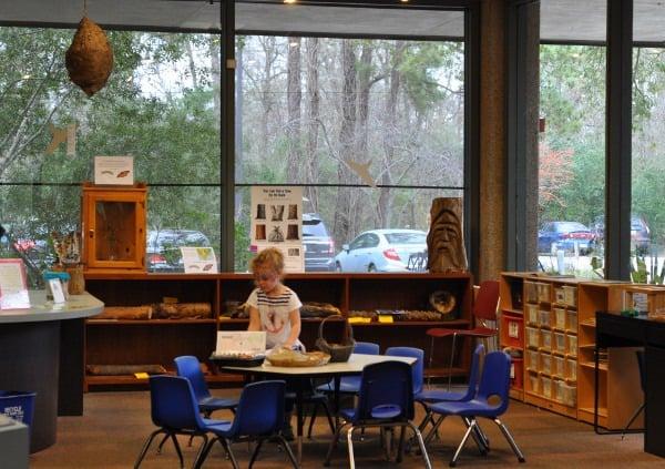 Houston Arboretum and Nature Center Crafts