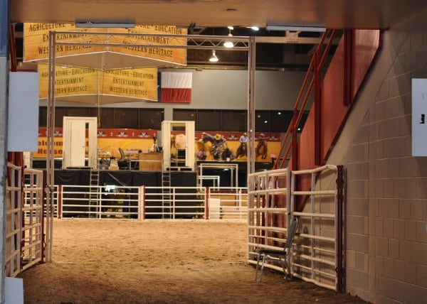 13 Free Things To Do In Houston With Kids At Rodeo Houston