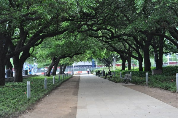 Disocvery green Walkway with Oak Trees