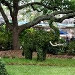 Elephant Topiary at Houston Zoo