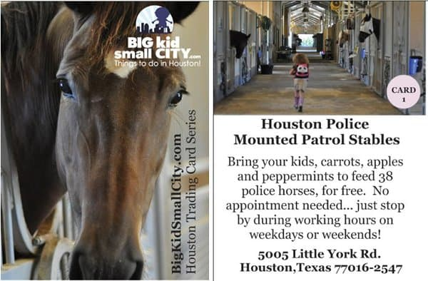 Mounted Patrol Stables