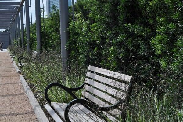 Benches at Centennial Garden Hermann Park