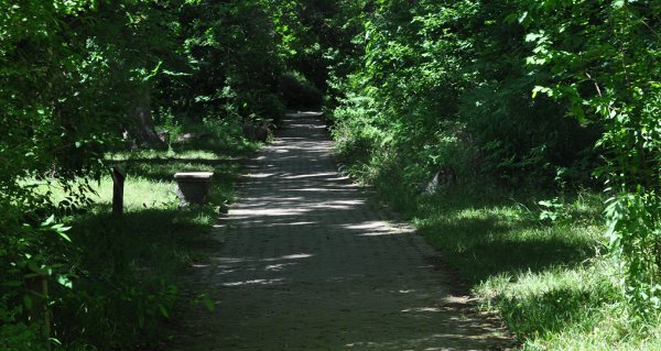 Path at Nature Discovery Center