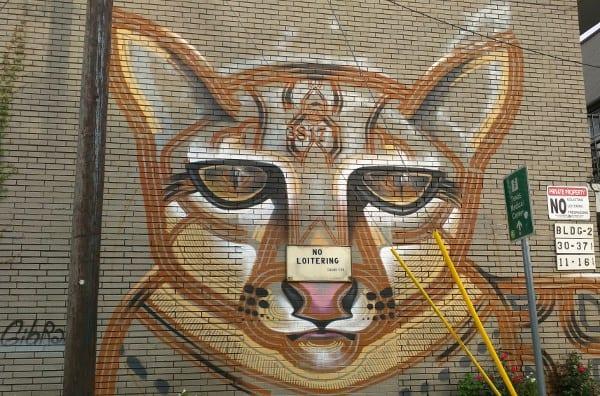 WIH Leopard 6