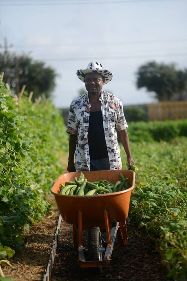 Farmer Sarment with Plant it Forward Houston