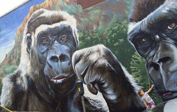 Gorilla Art Mural Richard's Antiques 3701 Main St Artist Anat Ronen