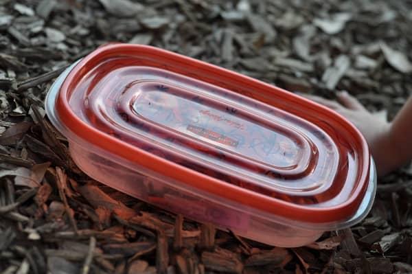 Treasure Box at the Park