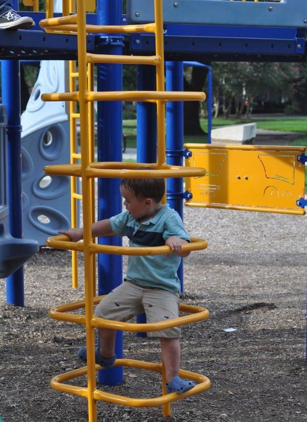 Halbert Park Houston Climbing Ladder