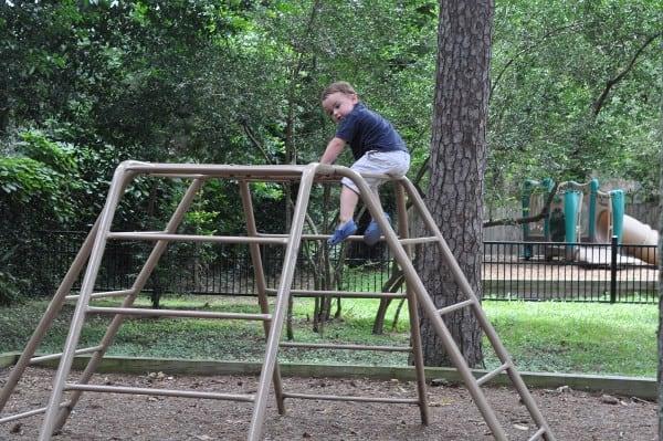 Hedwig Park Climbing