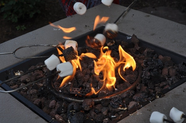 The Woodlands Resort Marshmallows Over Fire