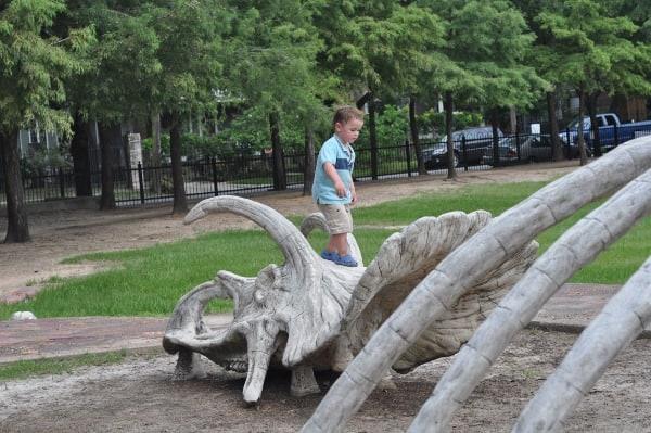 Travis Spark Park Dinosaur Bones