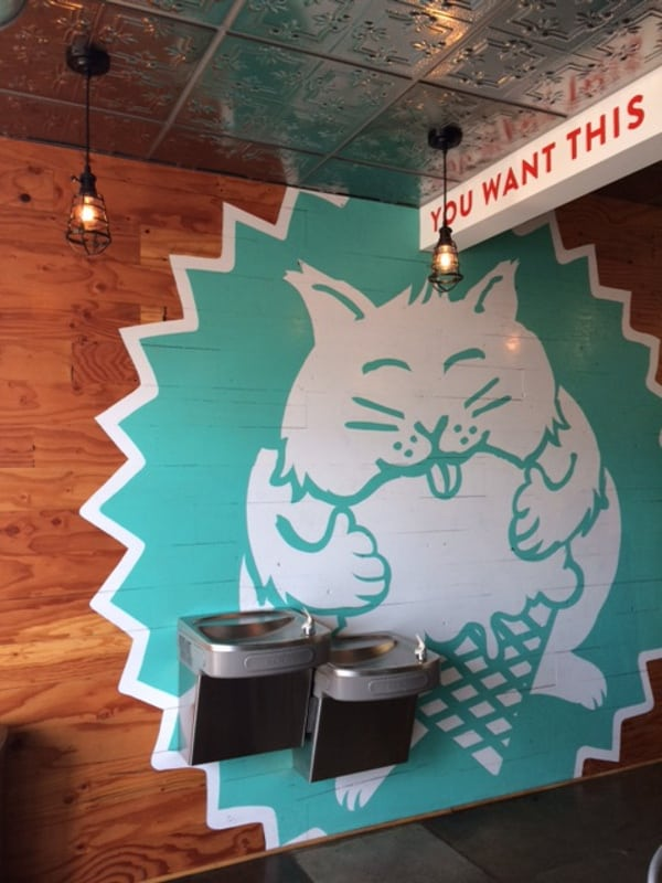 Fat Cat Creamery Houston Heights Walls