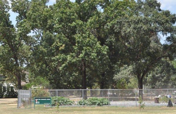 Freed Park Community Garden