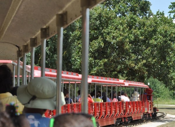Hermann Park Train