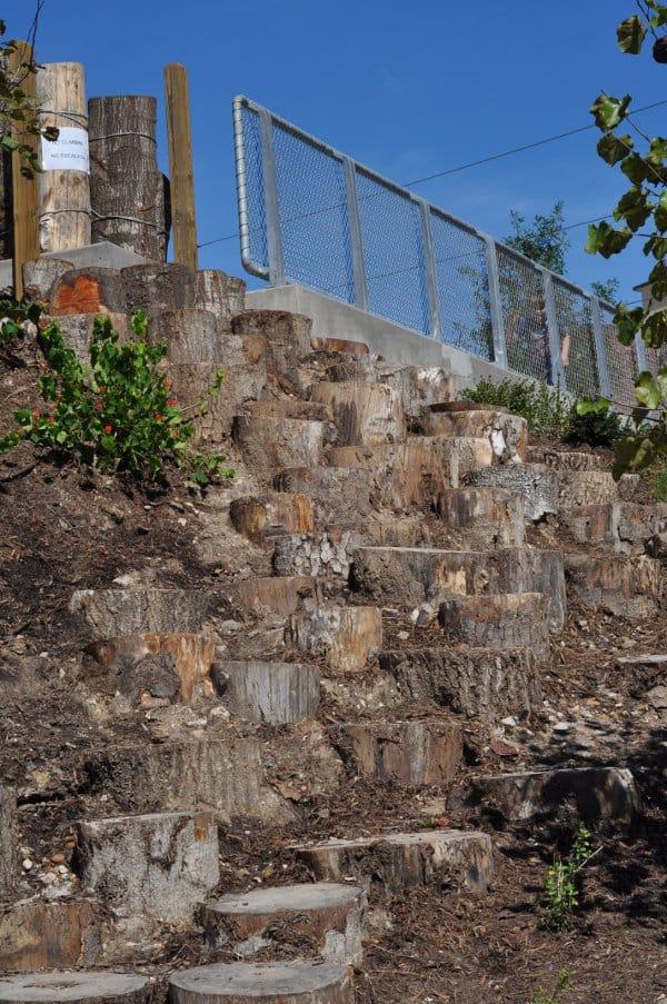 Fish Family Play Area Stumps for Climbing Buffalo Bayou Park