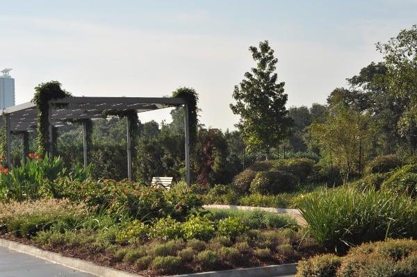 Hermann Park Centennial Garden Pergola1
