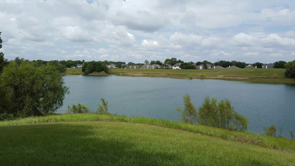 Tom Bass Park III Image 1