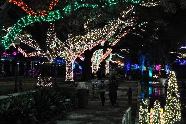 Houston Zoo Lights Fountain