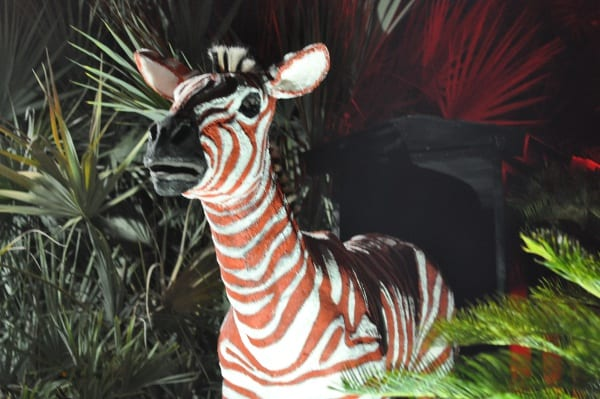 Houston Zoo Lights Red Zebra