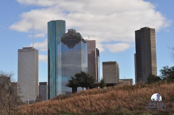Houston Skyline from tall grass in Buffalo Bayou Park
