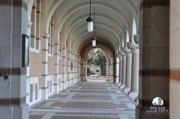 Rice University Lovett Hall Columns