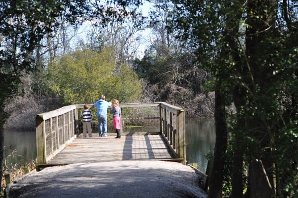 Theis Attaway Nature Park Pier BigKidSmallCity
