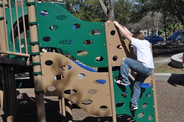 Briar Meadow Park Climber