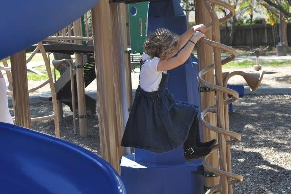 Briar Meadow Park Playground Climber