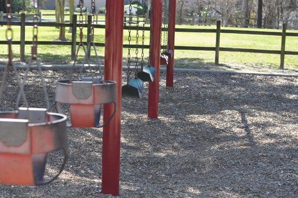 Briarbend Park Swings