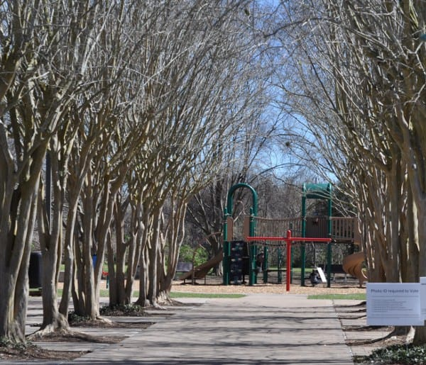 Lost Creek Park Playground