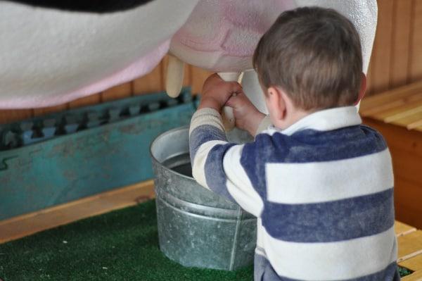 Rodeo Houston Fun on the Farm Milking cow