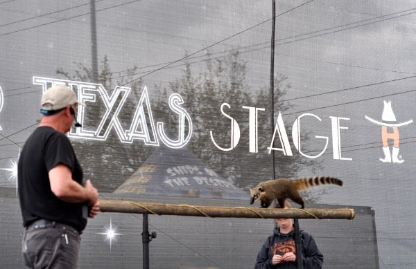 Rodeo Houston Stars Over Texas Stage