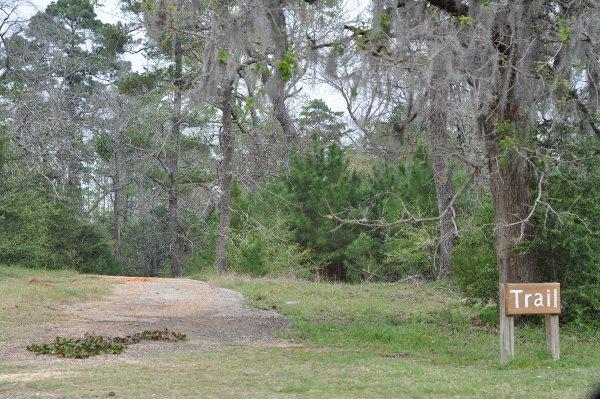 Spring Creek Park trail