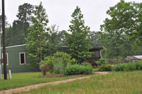Lake Houston Wilderness Park Nature Center BigKidSmallCity