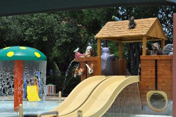 Noahs Ark at Quillian Center Pool Mushroom