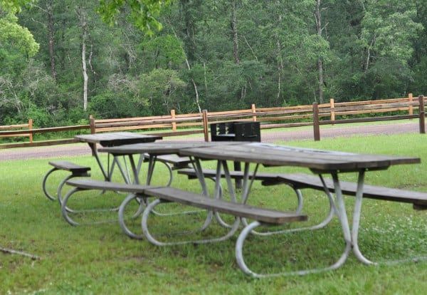 Picnic Tables at Lake Houston Wilderness Park BigKidSmallCity