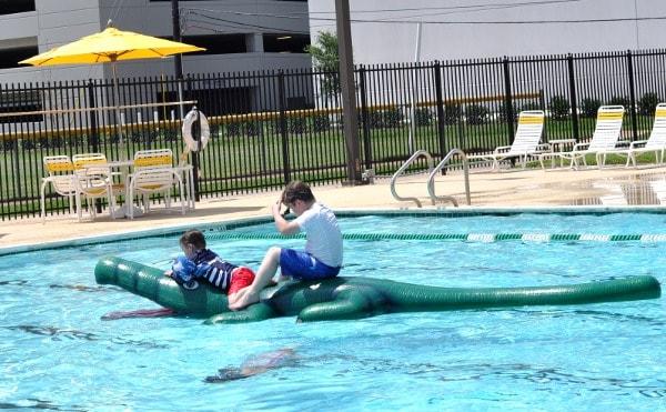 Quillian Center Pool Alligator