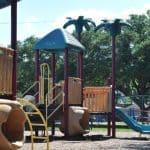 The Palm Tree Park… Field Elementary Spark Park!