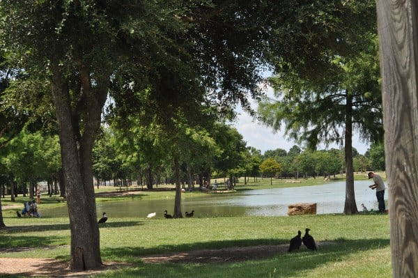 Mary Jo Peckham Park Family Fishing Lake Katy