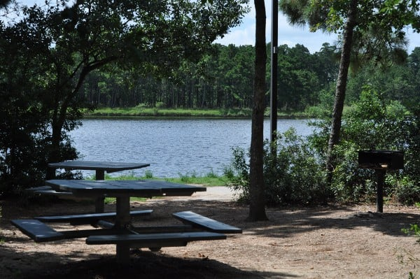 Northshore Park The Woodlands Shaded Picnic Area
