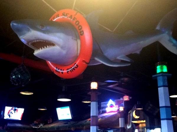 Blue Water Seafood Shark