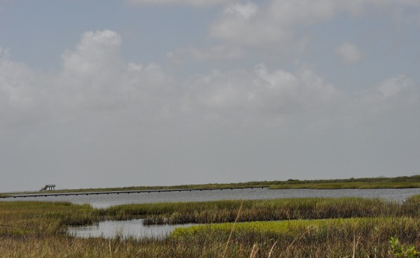 Galveston Island State Park… Beach, Nature Center, Trails ...