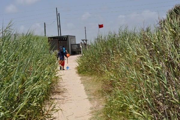 Galveston Island State Park Path