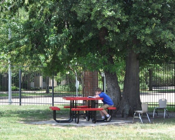 St George Spark Park Table in Shade