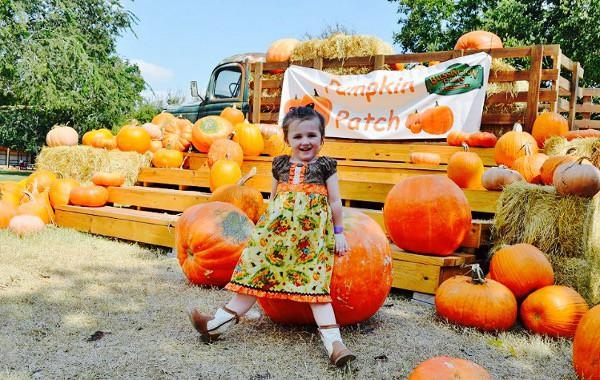 blessington-farms-pumpkin-patch