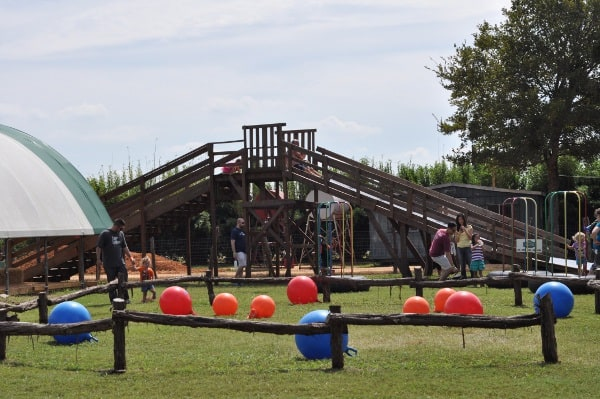 blessington-farms-balls-and-slide