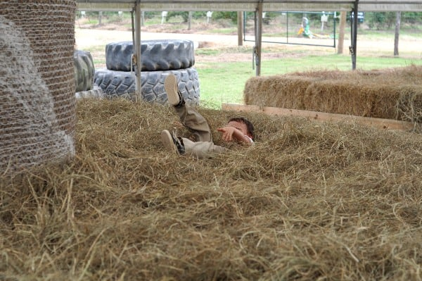 blessington-farms-hay-play-in-the-hay