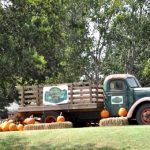 Top 10 Things to Do this Week & Weekend, in Houston, with Kids – October 17-23, 2016