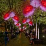 Light Up the Holidays… Discovery Green Art Installations for Winter 2016!
