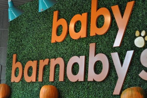 baby-barnabys-sign